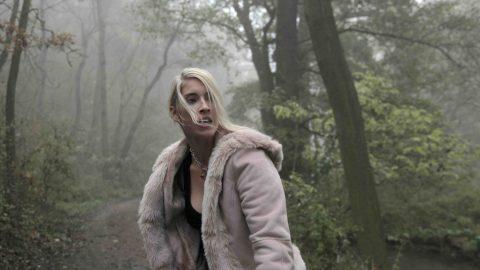Záblesky chladné neděle (2011)